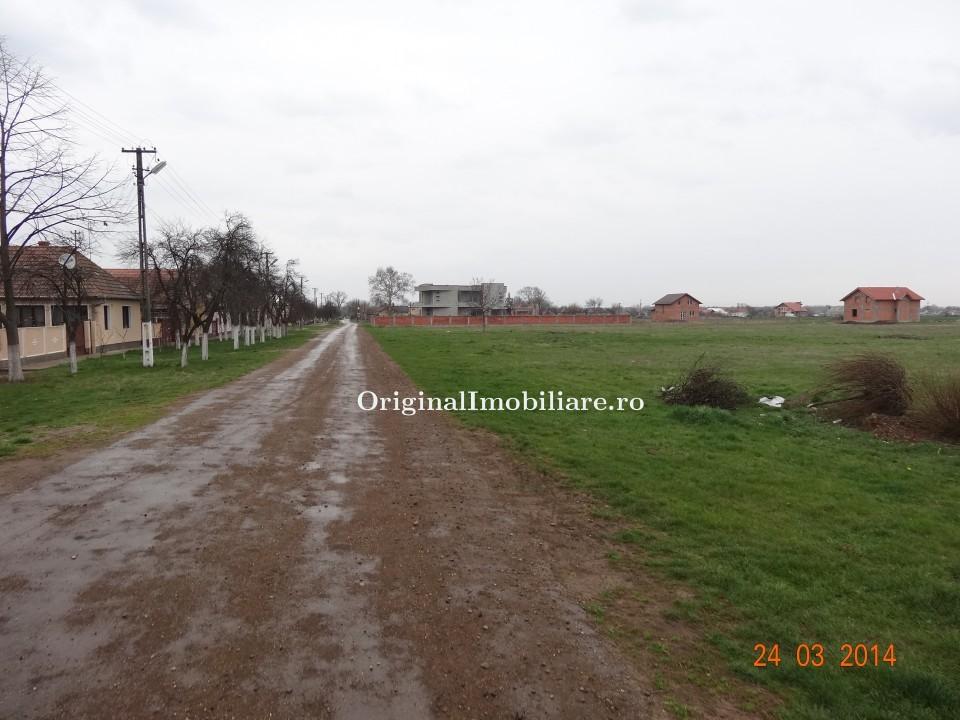 Loc de casa 500 mp in Bodrogu Nou